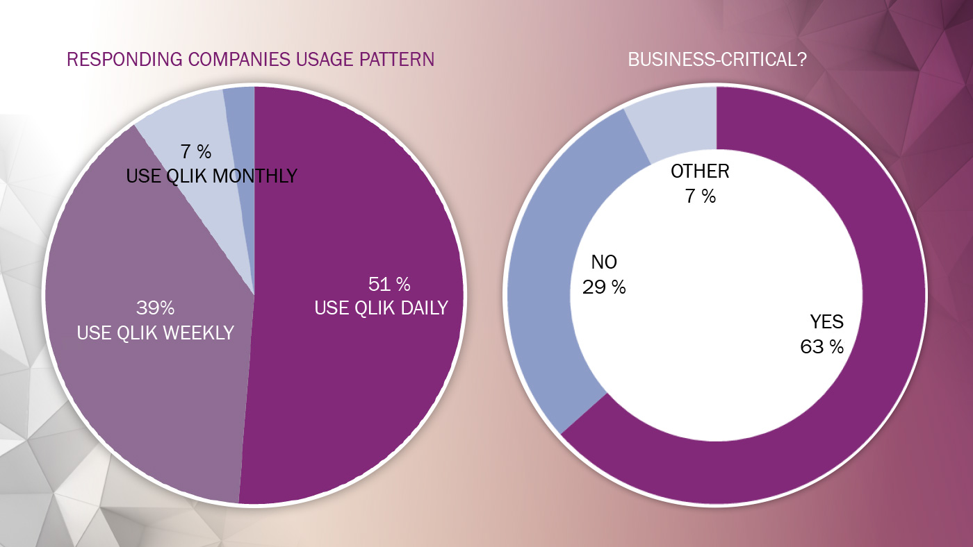 Climber Qlik's usage survey business critical